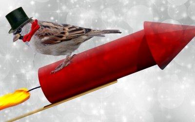 Kerst – Jaarwisseling gewijzigde openingstijden