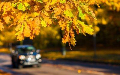 Herfst laat uw auto controleren
